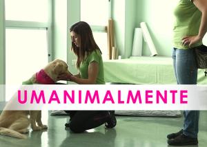 UAM umanimalmente è una associazione che fa pet therapy, e questo è il loro video promozionale a torino